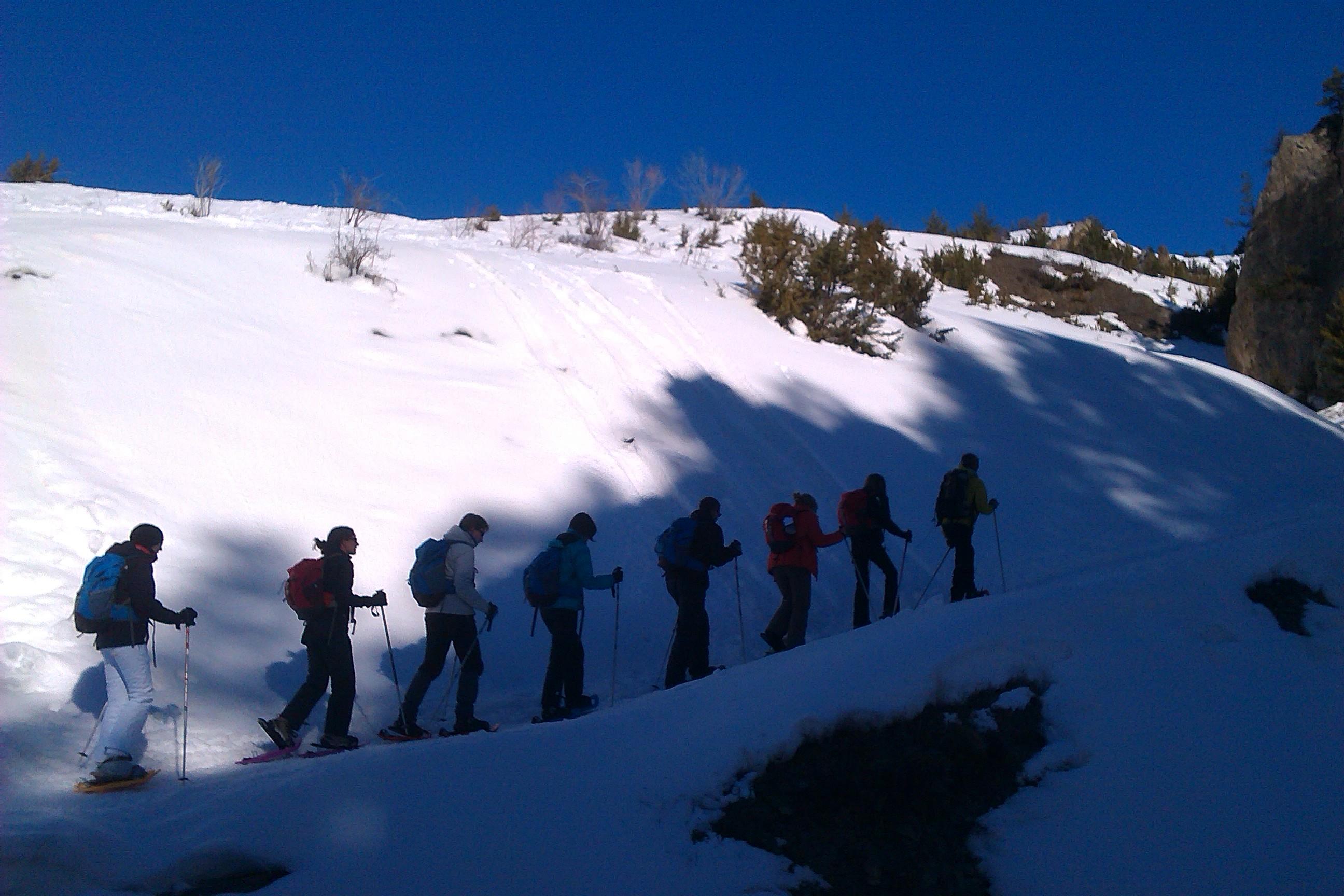 Randonnée hivernale 3 - Chemins et découverte